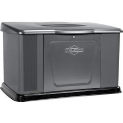Генератор газовый Briggs & Stratton 11000 / 040491