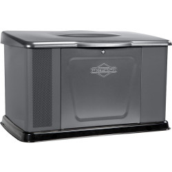 Генератор газовый Briggs & Stratton 14000 / 040489