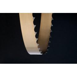 Пила ленточная бесконечная для станков ЗУБР ЗПЛ-305, L-2234 мм + шаг - 2 мм (12TPI) + H-10,0 мм / 155815-305-2