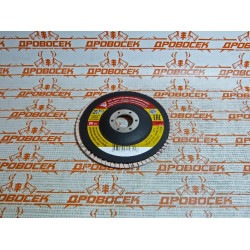 Круг лепестковый зернистость Р60, БАЗ - 125 мм / 36563-125-60